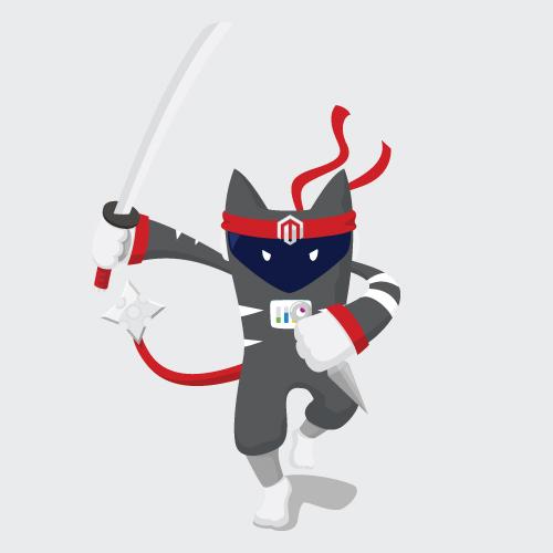 PHP Ninja