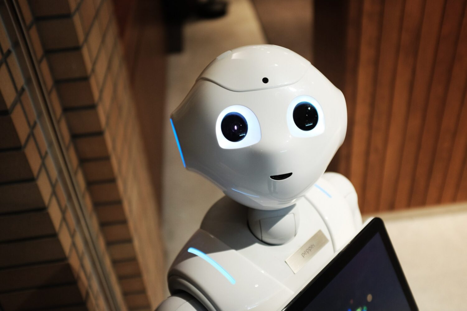 Pepper de robot - Innovatie